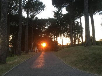 Drive at Ad Gentes during sunset