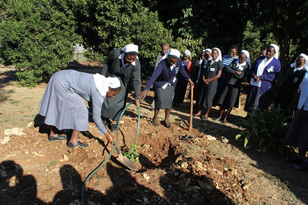 https://www.generalcongregation2020.org/wp-content/uploads/2019/10/zimbabwe-regional-congregation.jpg