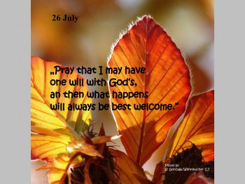 26 July